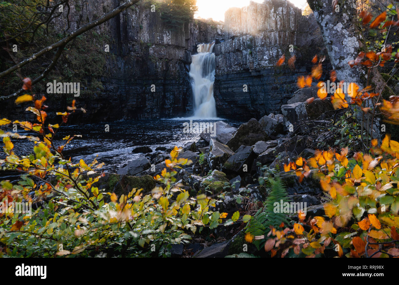 High Force and River Tees framed by autumn leaves, North Pennines Area of Outstanding Natural Beauty, Middleton-in-Teesdale, Teesdale, Durham, England - Stock Image