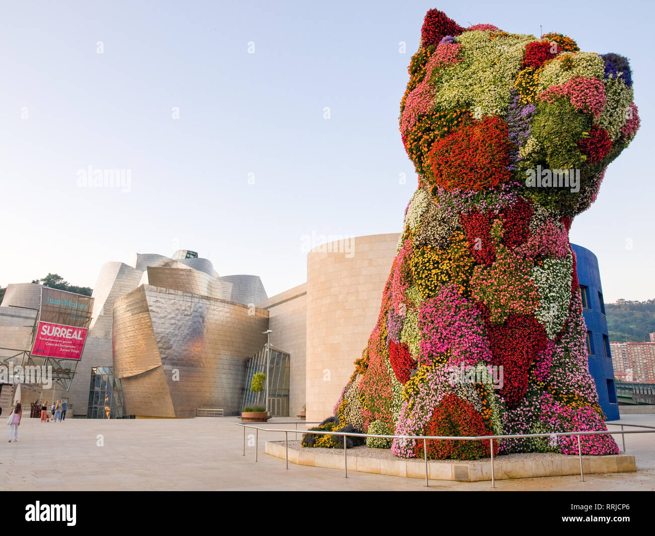 Puppy A Floral Topiary Sculpture By Jeff Koons Stands Guard In Front Of The Guggenheim Museum Bilbao In Bilbao Spain Stock Photo Alamy