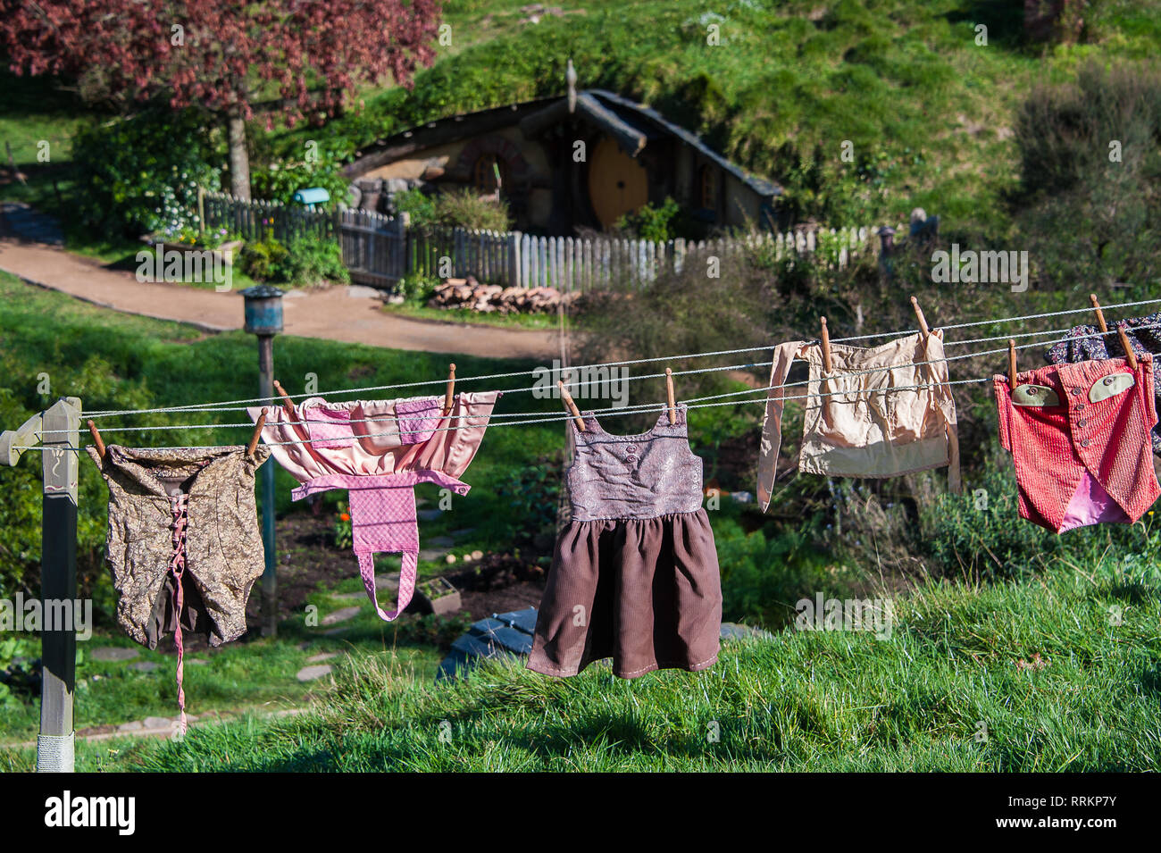 Hobbiton movie set created to film Lord of the Rings and The Hobbit. Washing hanging in the sun on a wooden clothes line in lush green grass - Stock Image