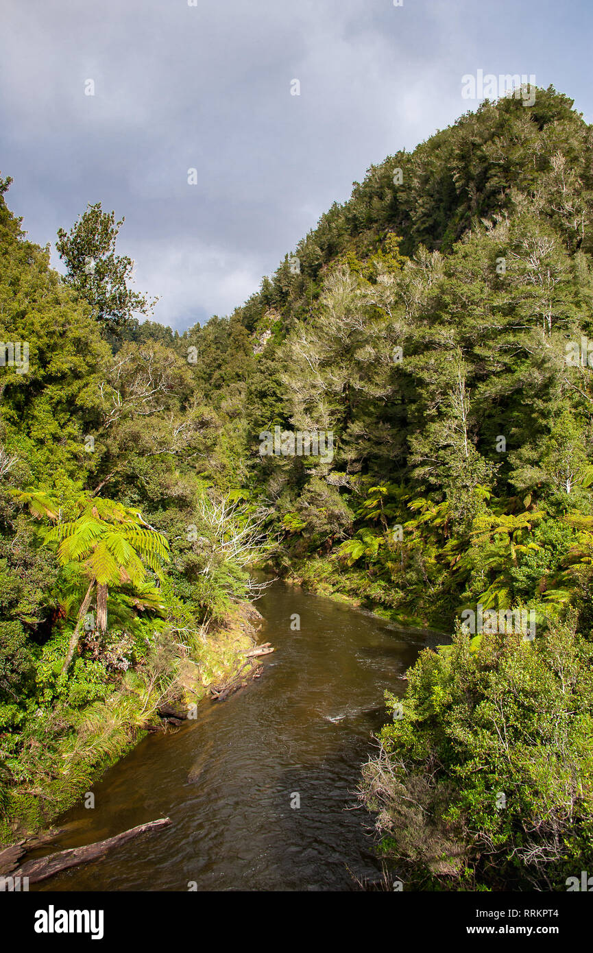 Tangarakau River gorge, Forgotten World Highway, New Zealand. Steep sided, rainforest covered. river valley. Green nature landscape with grey cloudy - Stock Image