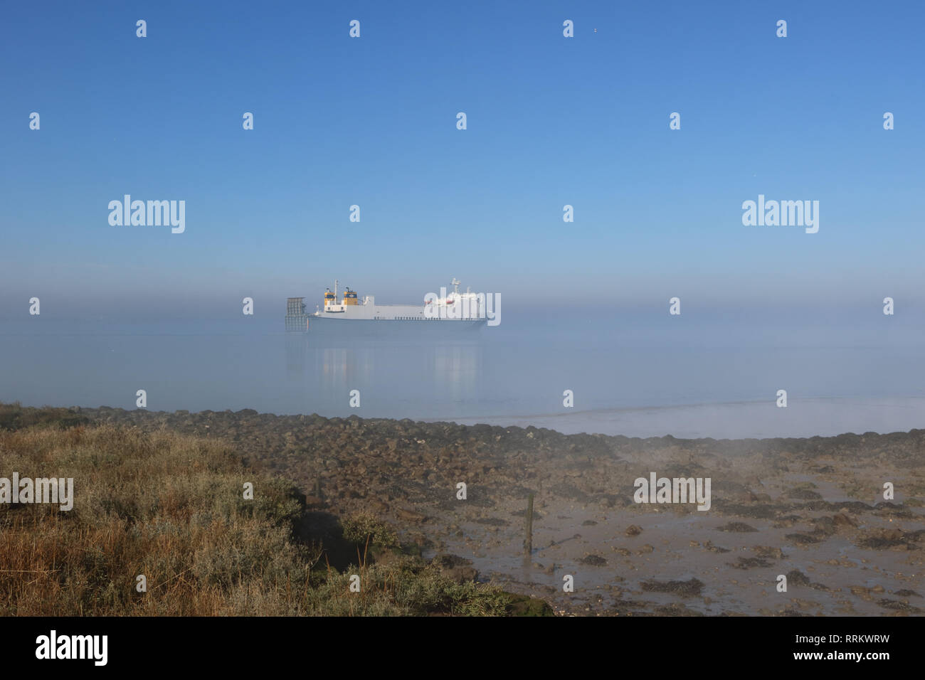 The Celestine cargo ship sails along the Thames Estuary before the mist had burnt away at Cliffe in Kent. Stock Photo