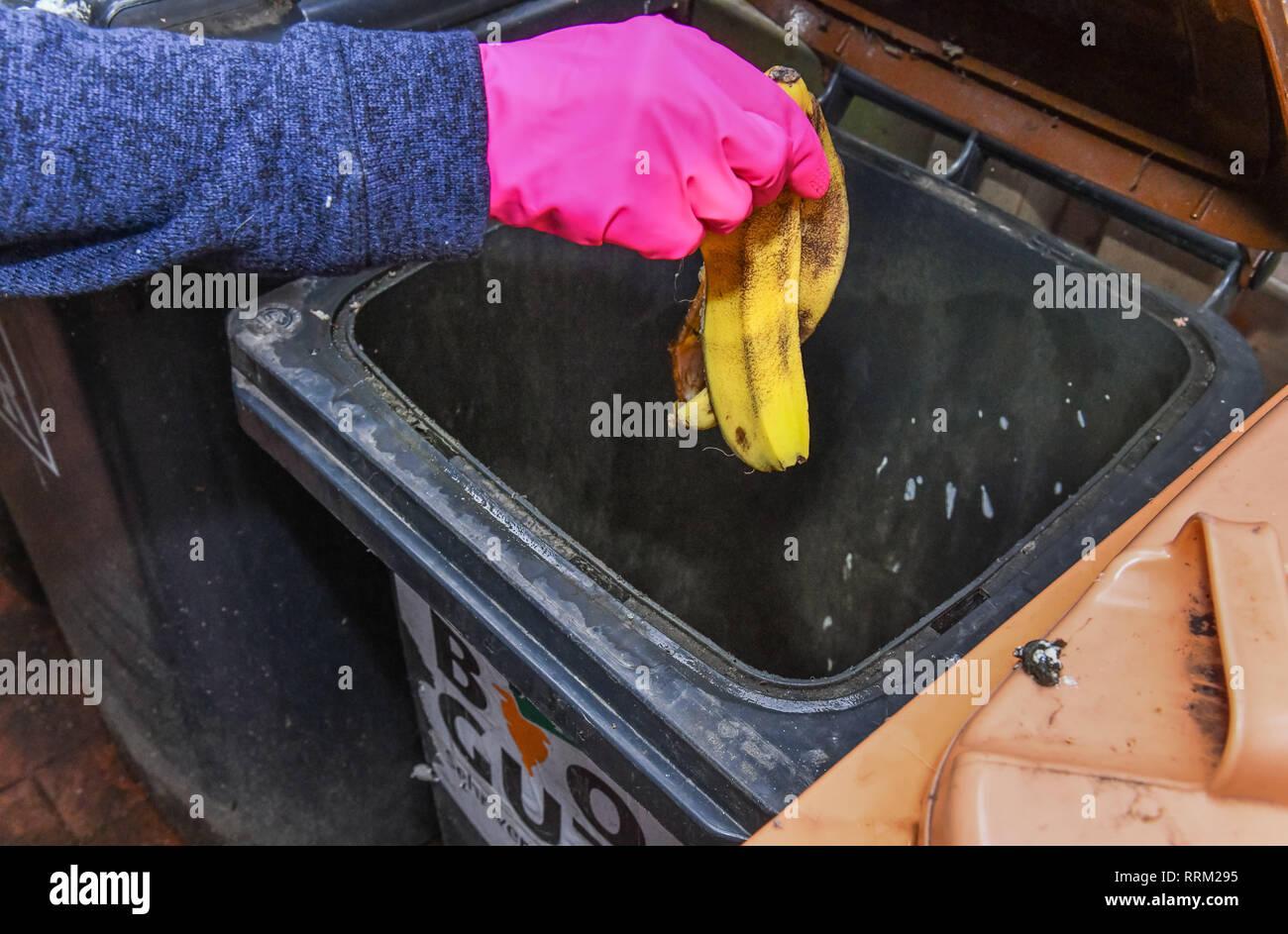 Biowell, bio-waste container, Berlin, Germany, Biogut, Biotonne, Deutschland Stock Photo