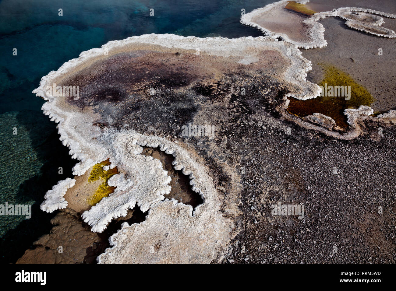WY03841-00...WYOMING - Columbia Spring with a delicate border of bulbous sinter and cyanobacteria at Heart Lake Geyser Basin in Yellowstone National P - Stock Image