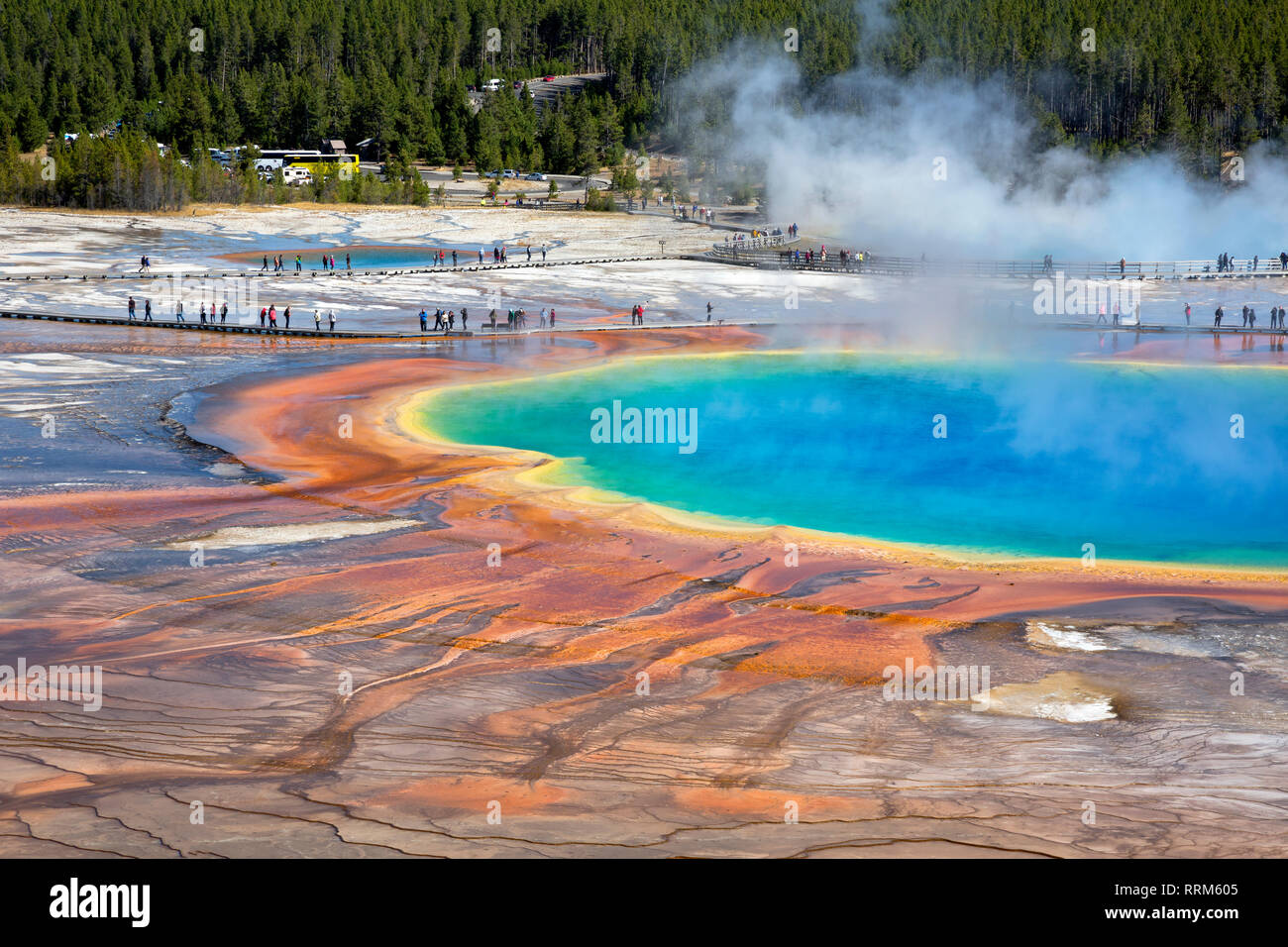 WY03856-00...WYOMING - The colorful Grand Prismatic Spring in the Midway Geyser Basin of Yellowstone National Park. Stock Photo