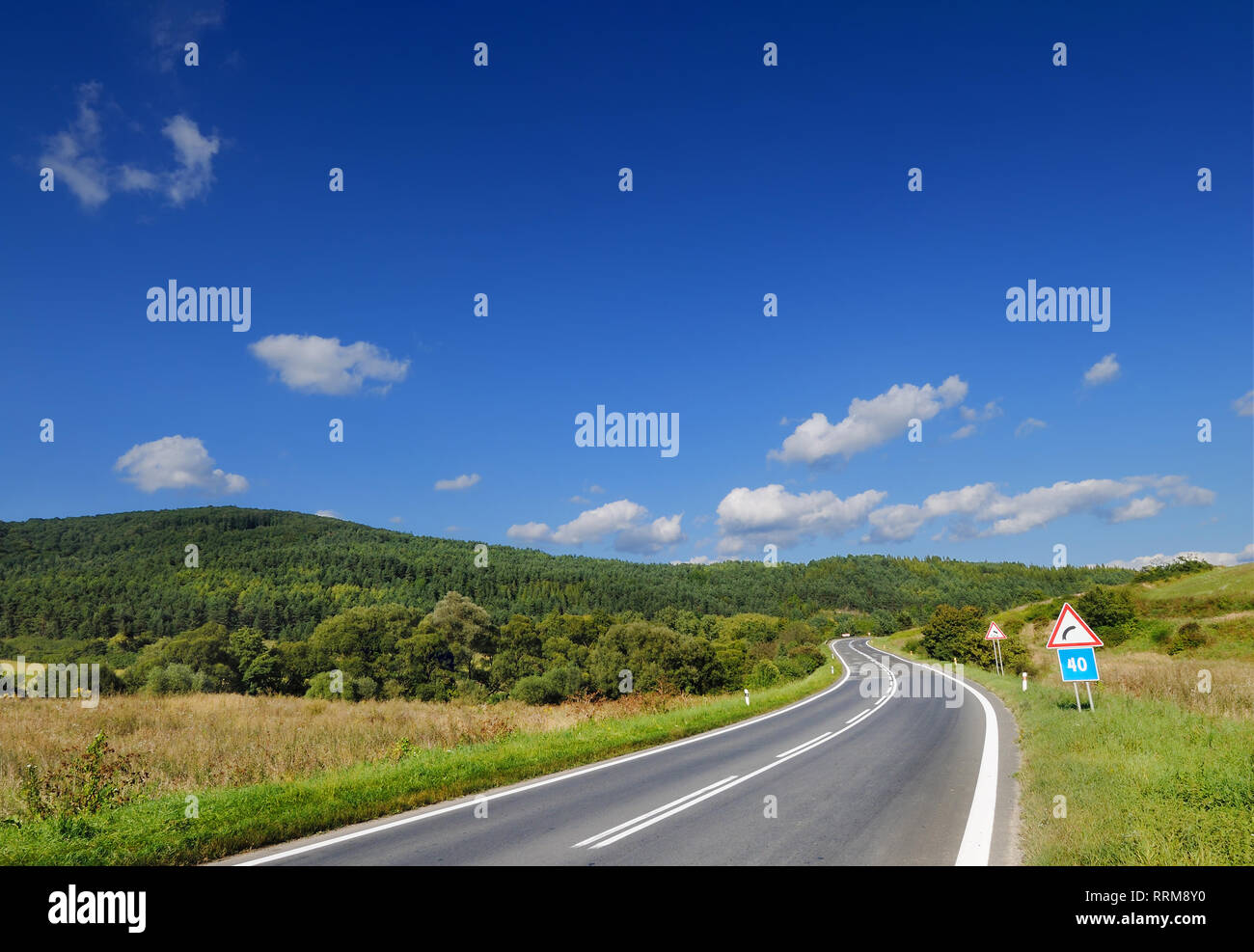 Road among green fields, blue sky and white clouds in the background Stock Photo