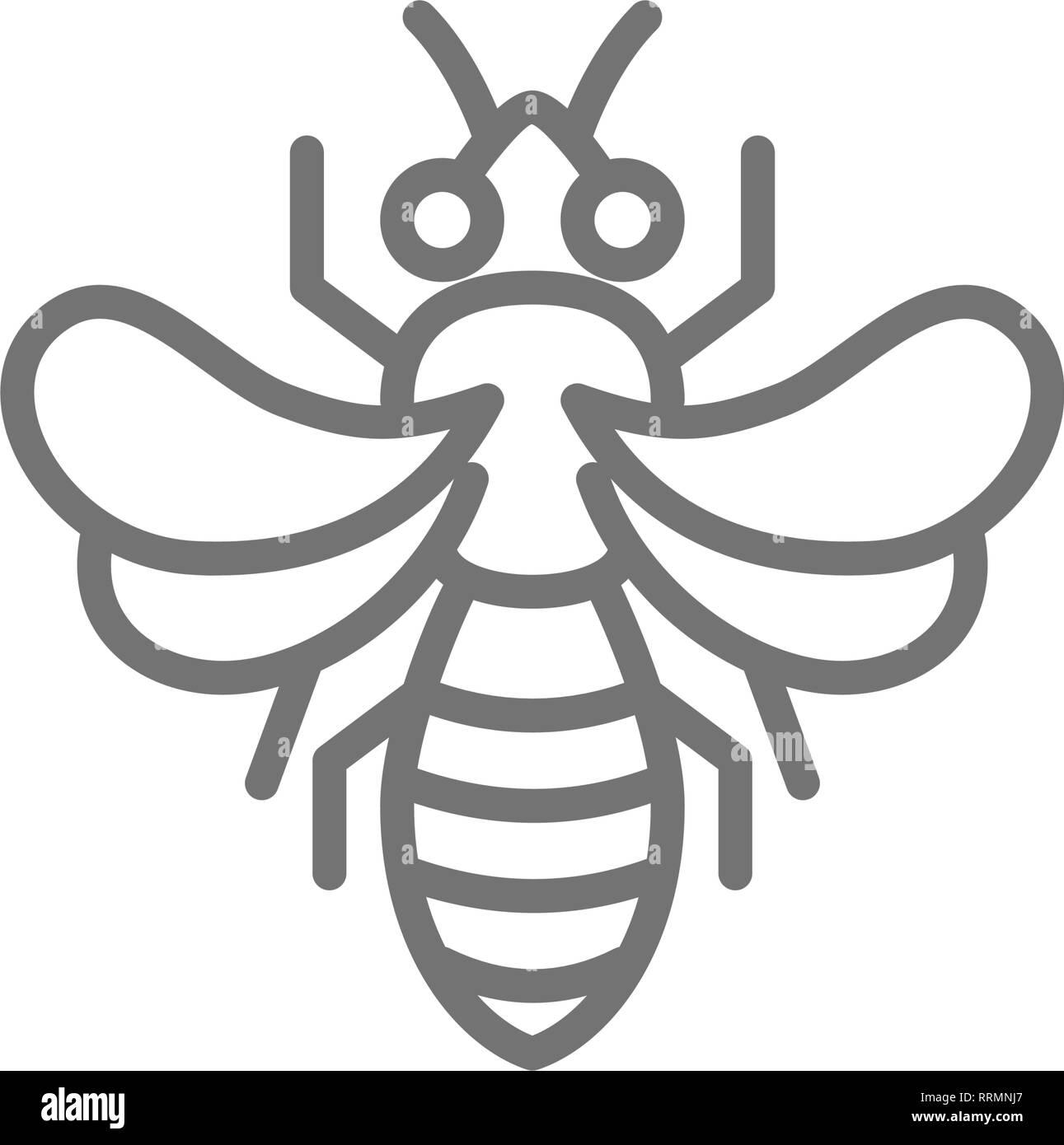 Honey bee, beekeeping line icon. - Stock Image