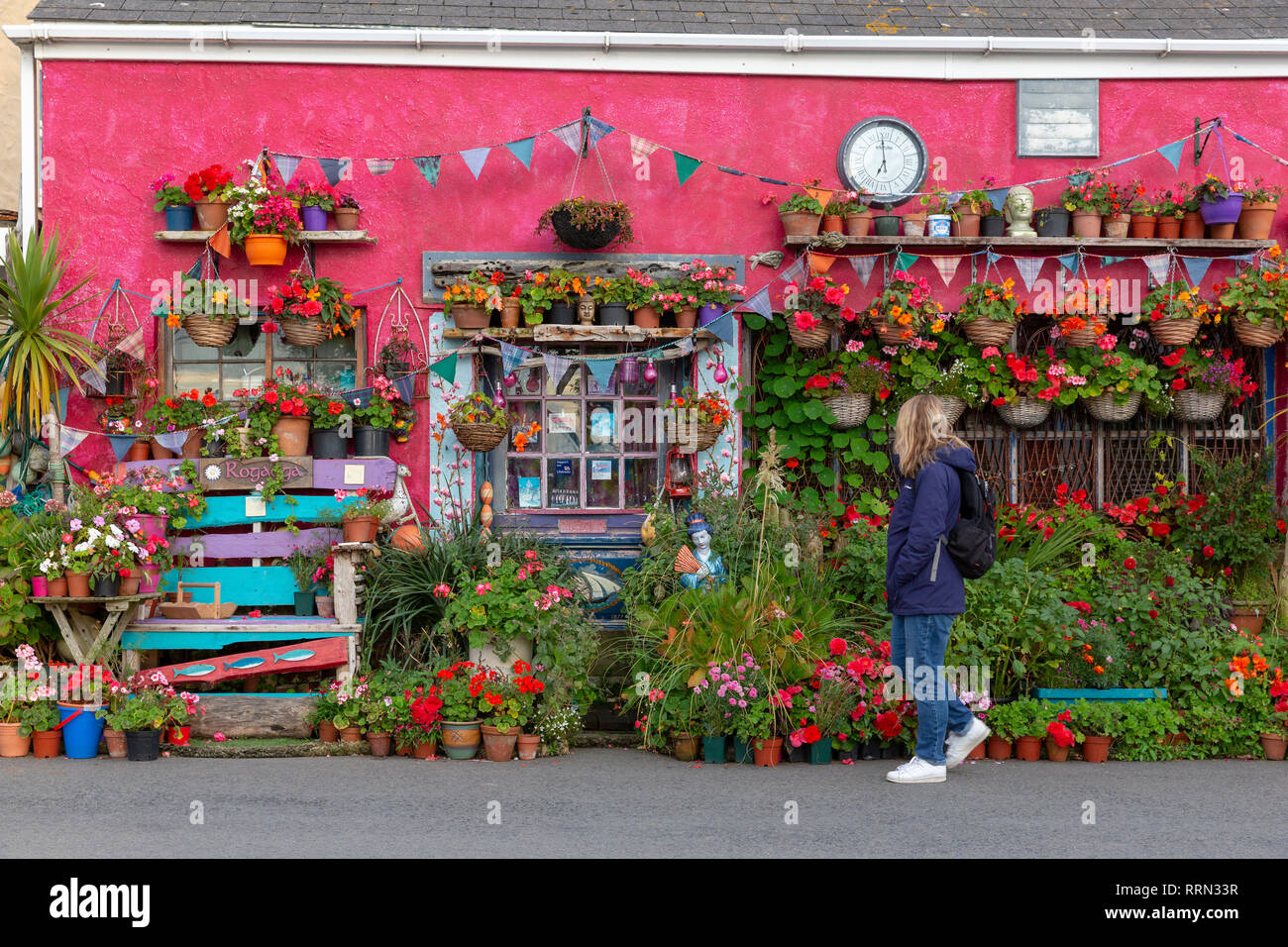 Tourist admiring the highly colourful decoration and plants adorning a house exterior  in Lizard, Cornwall, UK - Stock Image