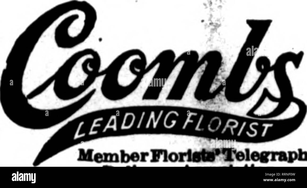 . Florists' review [microform]. Floriculture. CARBONE, 848 Boylston St., BOSTON Member Florisb' Telegraph Delivery Ass'n ROCTAN Nassachusetts Will Uil^ S4 Tremont St. I. NEWMAN ft SONS GORP'N •ritrs by wire receive preapt aad carefnl eieartiea. We can refer to lekdins floriats in all principal cities. Bstablished 1870.. Member Florlalif Telegraph DeUTerr AaM>cUtlon. Orders aollclted for all parts ot Connectlcat Stores: • 741 Main St. 364 ABylom St Greenhouses) Benton St. Hartfoxd« Gonn. H. F. A. LANGE Worcester, Mass. Delivers to Ail Points in New England 125,000 Square Feet of Qlass Member - Stock Image