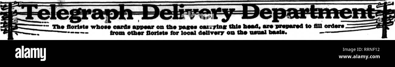 . Florists' review [microform]. Floriculture. Fbbhdabt 24, 1916. The Florists' Review 63. CARBONE, 848 Boylston St., BOSTON Member Florisb' Telegraph Delivery Ass'n ROCTAN Nassachusetts Will Uil^ S4 Tremont St. I. NEWMAN ft SONS GORP'N •ritrs by wire receive preapt aad carefnl eieartiea. We can refer to lekdins floriats in all principal cities. Bstablished 1870.. Please note that these images are extracted from scanned page images that may have been digitally enhanced for readability - coloration and appearance of these illustrations may not perfectly resemble the original work.. Chicago : Flo - Stock Image