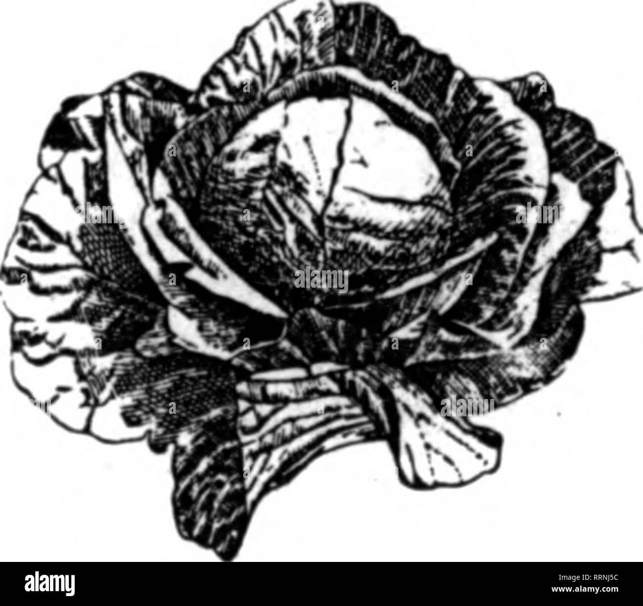 Shenandoah Black and White Stock Photos & Images - Page 3 - Alamy