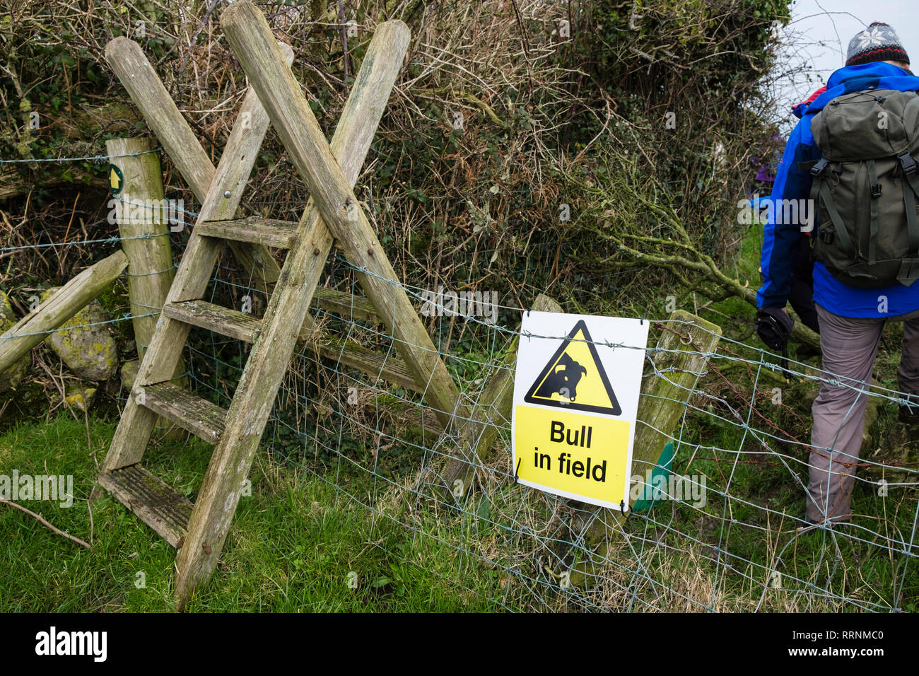 Bull in Field unlawful sign on fence by stile on a public footpath through a farm field. Moelfre, Isle of Anglesey, Wales, UK, Britain - Stock Image