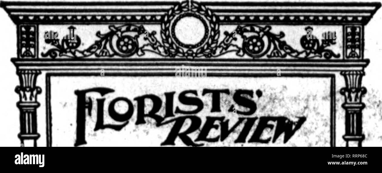 . Florists' review [microform]. Floriculture. 22 The Florists^ Review Sbptbic: M. 1915:. ir Estobllshed, 1897. by Q. L. GBAirr. Pnbllahed every Thursday by Thk Florists* Poblishinq Co., 630-660 O^toa BnUdlntr, SOSSoutb Dearborn St., Ohlcaffo. Tel»..WBba8b8196. I8ldent, Daniel MacKorle. San rranclaco; secretary, John Toong, 63 W. 28th St.. New York City; treasurer. W. r. Kastlng, Bnffalo Officers for 1916: President. Daniel MsoTlorle, SsD Francisco; vice-president. R. C. Kerr, Oods- tim, Tex. Secretary and treasurer aa before. Tblrty-second annual convention. Houston, Texas, August IB to 18, 10 - Stock Image