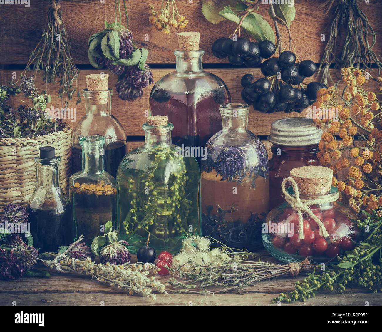 Bottles of tincture, potion, oil, healthy berries and healing herbs. Retro toned. Herbal medicine. - Stock Image