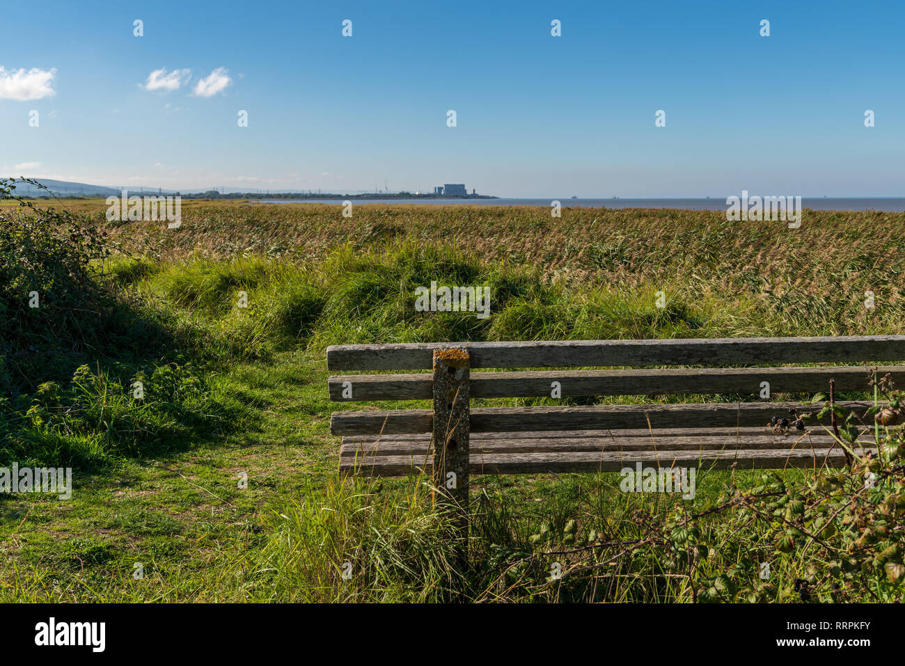 Bridgwater Bay Nature Reserve, England, UK - October 04, 2018: A bench with a view over the Bristol Channel and Hinkley Point Nuclear Power Station in - Stock Image
