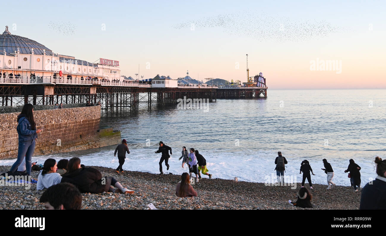 Brighton, UK. 26th Jan, 2019. Brighton beach is packed this evening as the unusually warm sunny weather continues throughout Britain with some areas reaching over 20 degrees centigrade again Credit: Simon Dack/Alamy Live News - Stock Image
