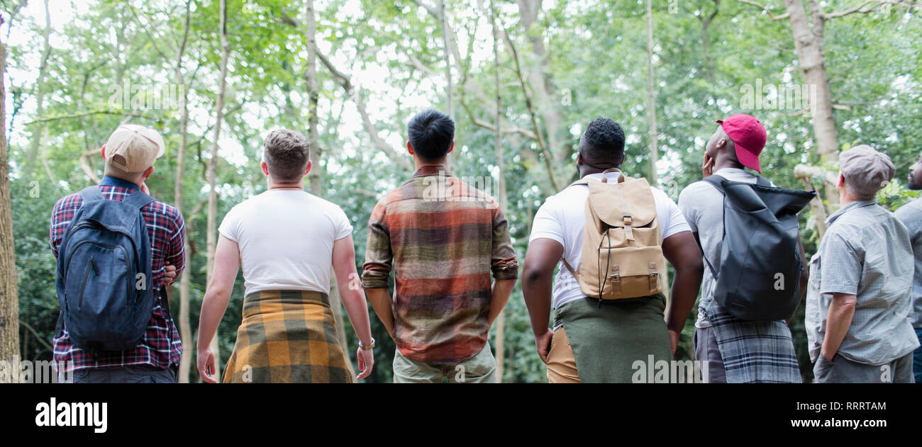 Mens group hiking, standing in a row and bird watching in woods - Stock Image