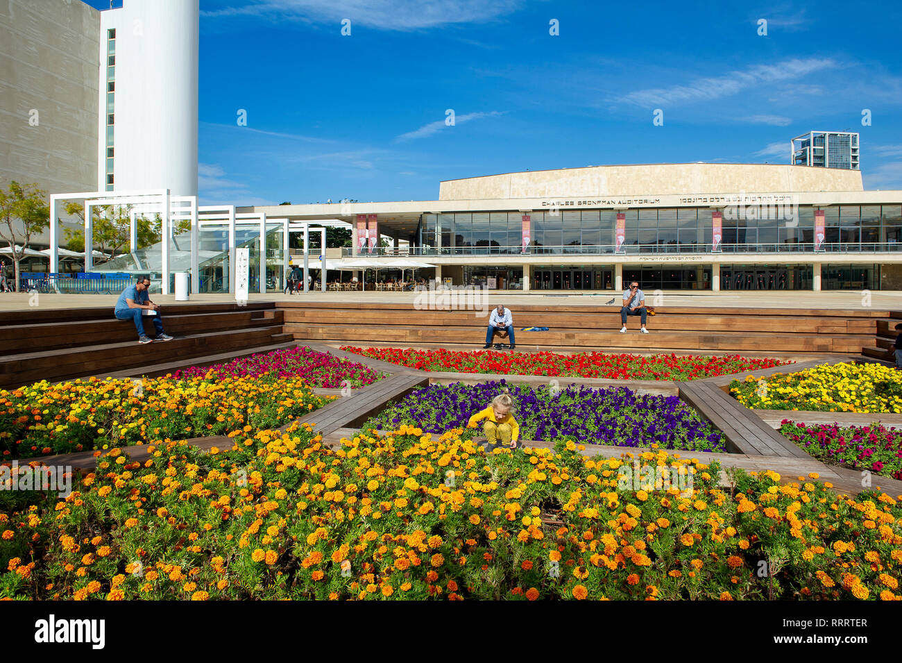 Colourful flower garden at HaBima square, Tel Aviv. In the background, Charles Bronfman Auditorium - Stock Image