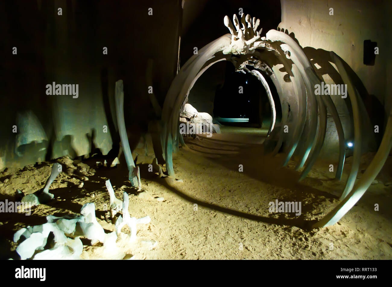Doué-la-Fontaine, France - April 27, 2018:  Les Perrières - Le Mystère des faluns museum. An arch in the cave made from dinosaur bones in a dark creep - Stock Image