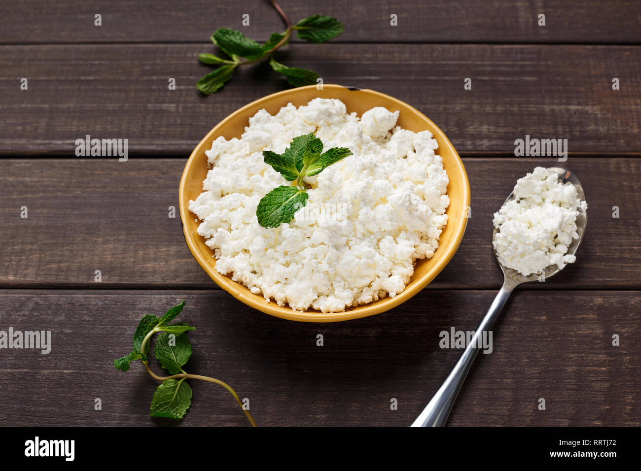 Fresh homemade cottage cheese - Stock Image