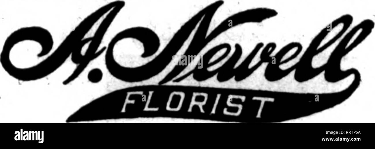 eb05a12040e1 3 X  LEADING RETAIL FLORISTS Hm retail florists whose cards appear on the  pages carrying this head