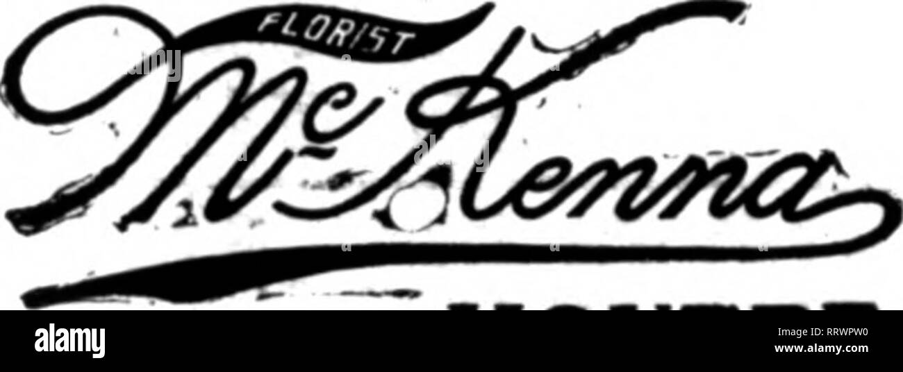 . Florists' review [microform]. Floriculture. FLORIST 413 JVUdlson Ave.. Cor. 48th St.. NEW YORK Bellevue Avenue, Newport. R. I. All orders receive careful attention. Choice Beauties, Orchids and Valley always on hand.. MONTREAL ESTATE OF FRED EHRET WHOLKSAUE AND RKTAIL IXORIST 1407 Fairmoant ATeaae and 708 K. Broad Street PHILADELPHIA Orders for Philadelphia and surrounding country carefully filled on short notice. NYER 609-llHa&onA¥e.,NewY«rk LD.niM 6297niM WELLESLEY COLLEGE Dana Hall, Wilnnt Hill, Bockrldffe Hall 8choolt TAILBY. Wellesley, Mass. Long Distance Tel., Wellesley 44-1, 44-2, - Stock Image