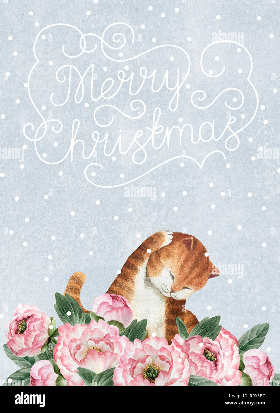 Greeting postcard with cute watercolor cat. Fat cat isolated on blue background with snowflakes for design, postcards, banners. - Stock Image