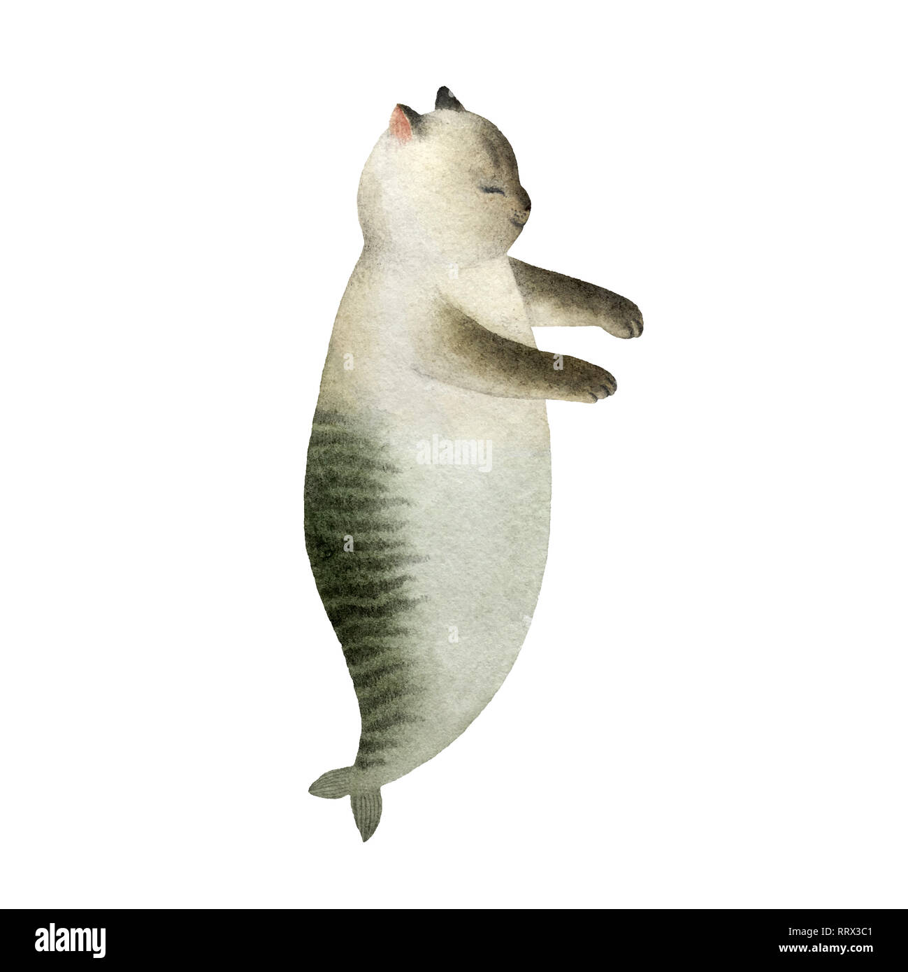 Cute watercolor cat mermaid character isolated on white background for design, postcards, banners. - Stock Image