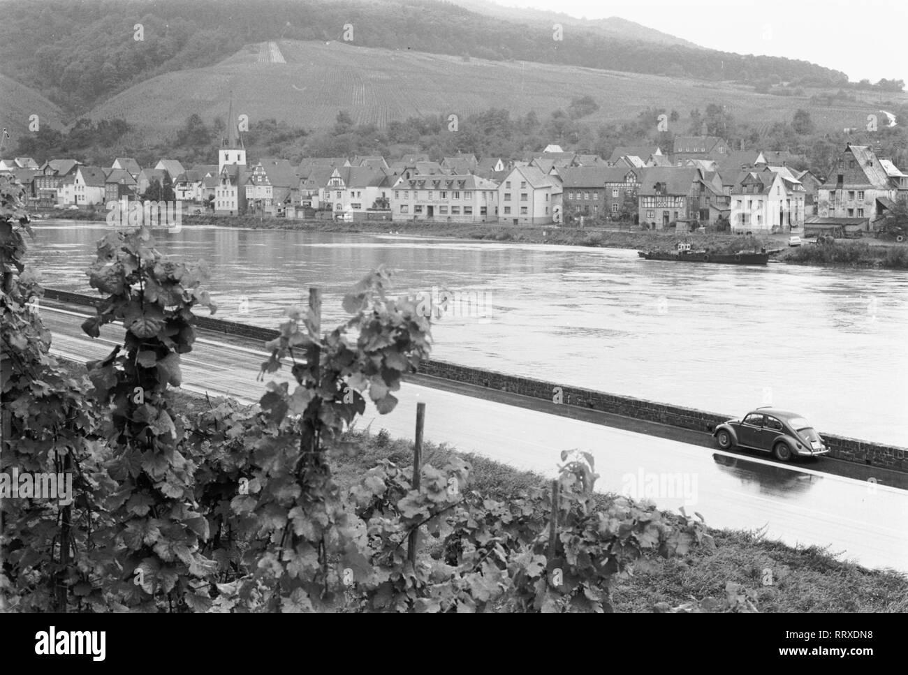 VW Beetle - Käfer, Beetle, VW, Auto, Fluss, Rhein, Stadt, Weinberg - Stock Image