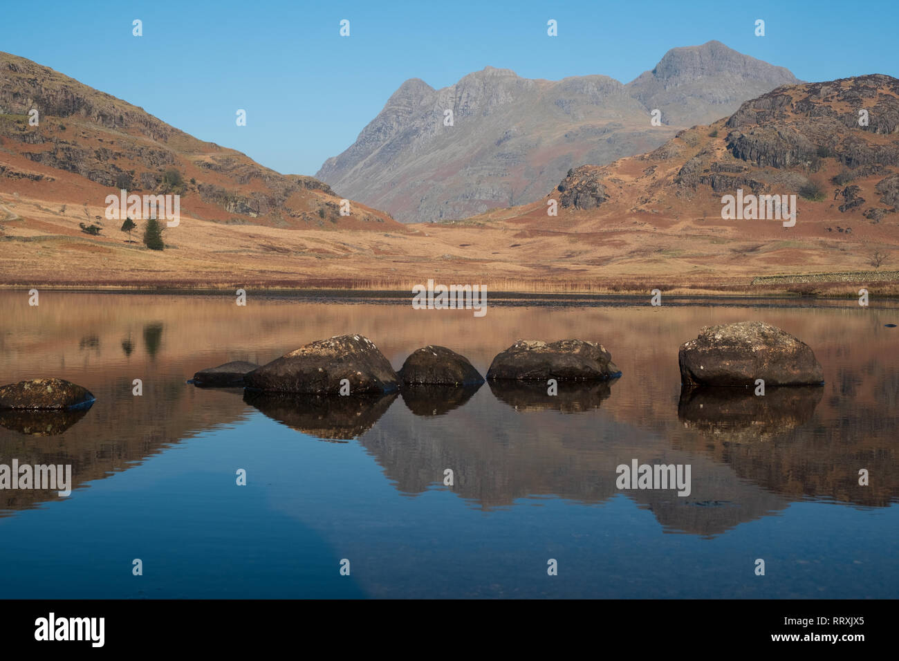 The Langdale Pikes reflected in Blea Tarn (close up), Lake District, UK Stock Photo