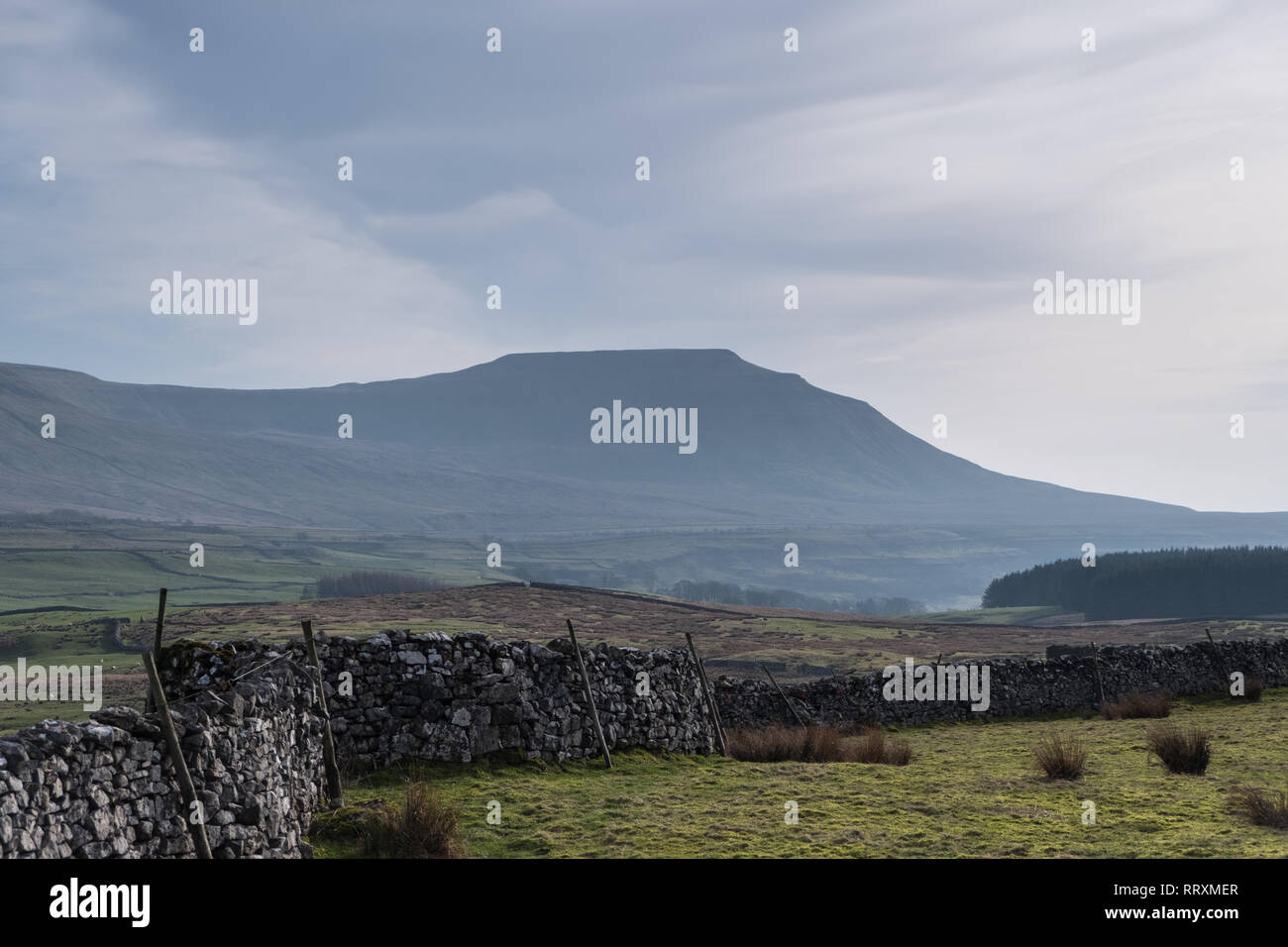 Ingleborough from the Winterscales dale in the Yorkshire Dales - Stock Image