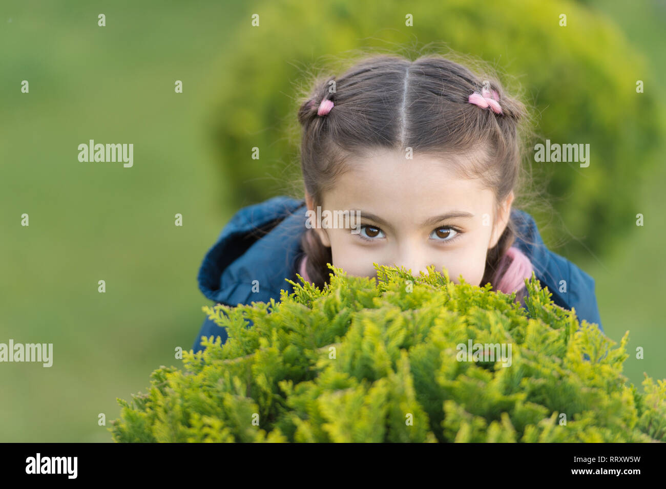 Girl cute kid green grass background. Healthy emotional happy kid relaxing outdoors. What makes child happy. Girl braids hairstyle enjoy relax. Happy hiding game outdoors. Play hide and seek. - Stock Image