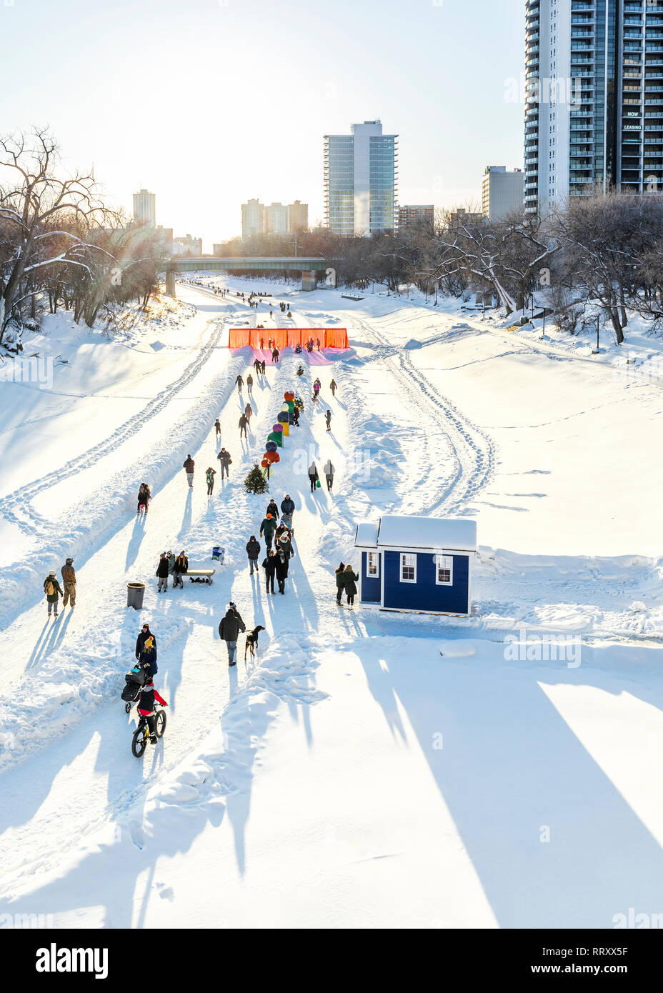 Ice skaters, cyclists, dog walkers on the frozen Assiniboine River, part of the Red River Mutual Trail, The Forks, Winnipeg, Manitoba, Canada. Stock Photo