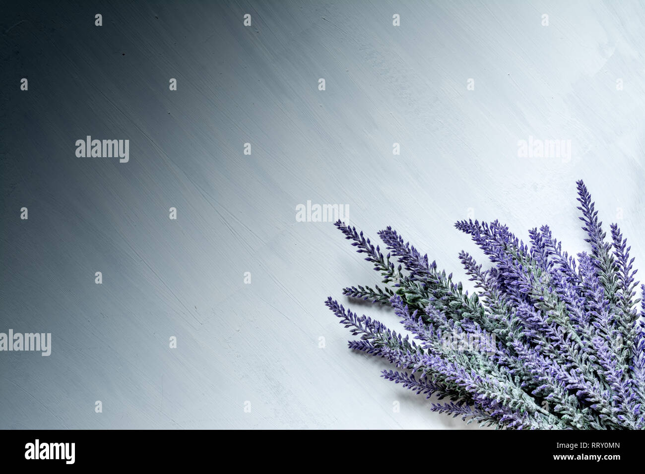 Branches of lavender closeup on a white vintage background with divorces of paint and gradient, with space for text. - Stock Image