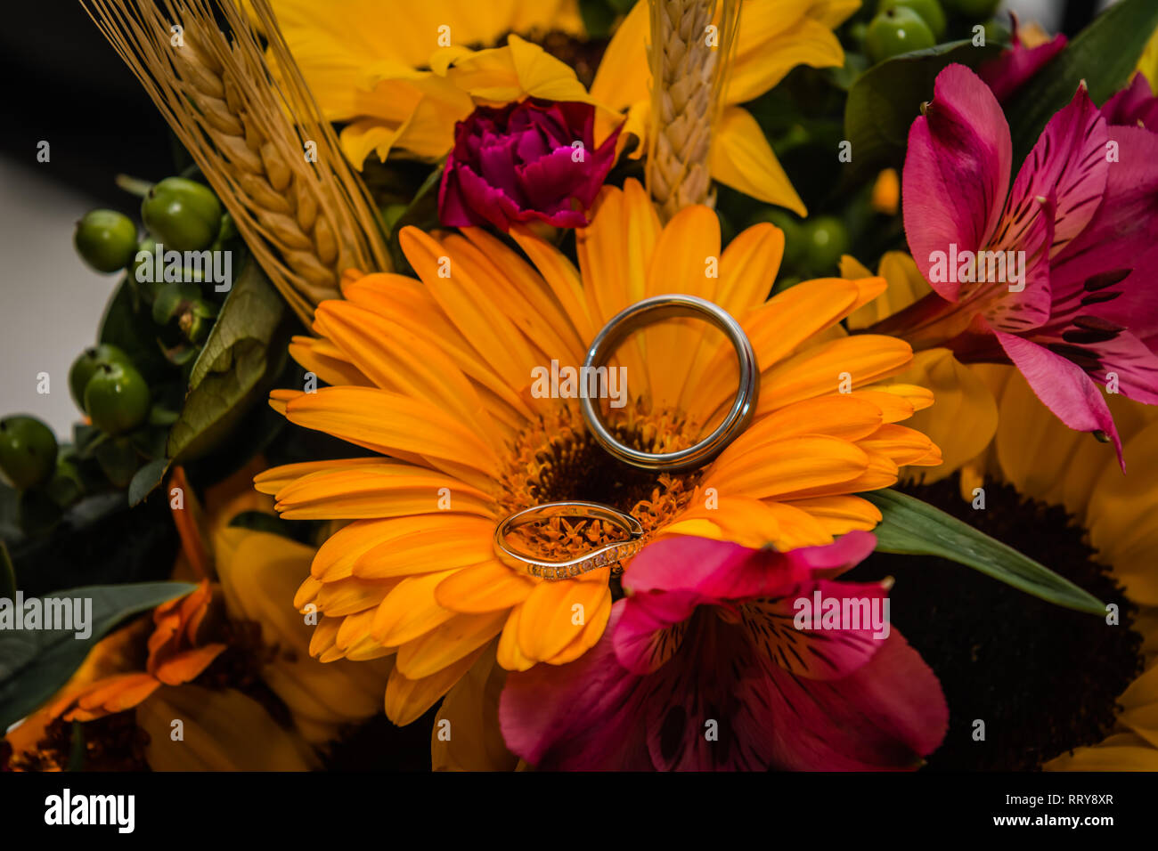 Wedding rings nestled in a bouquet of colorful flowers - Stock Image
