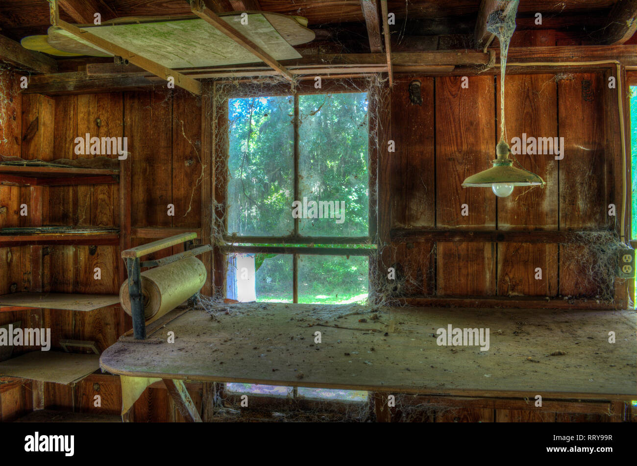 Looking out at a new day from the interior of a time worn dusty cobweb filled shop - Stock Image