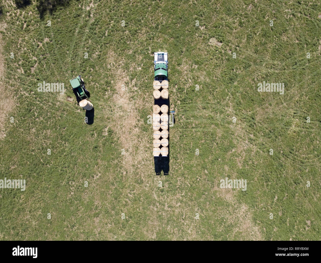 Aerial view Australian agriculture with tractor loading hay bales onto truck and semi trailer in a green paddock. Drone photography from above. - Stock Image