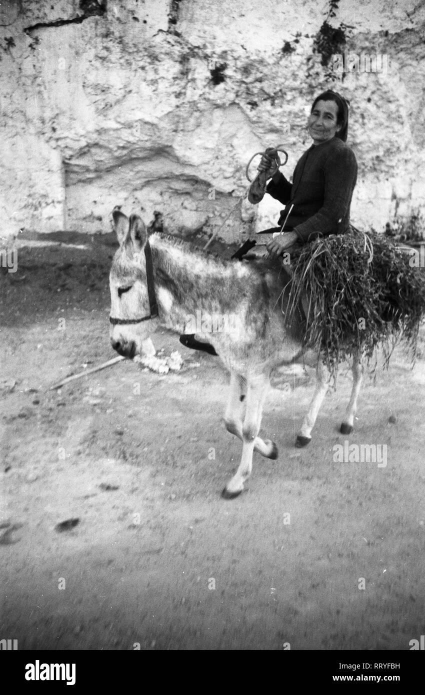 Griechenland, Greece - Eine Frau auf ihrem Esel auf Rhodos, Griechenland, 1950er Jahre. A woman on the back of her donkey on Rhodos, Greece, 1950s. Stock Photo