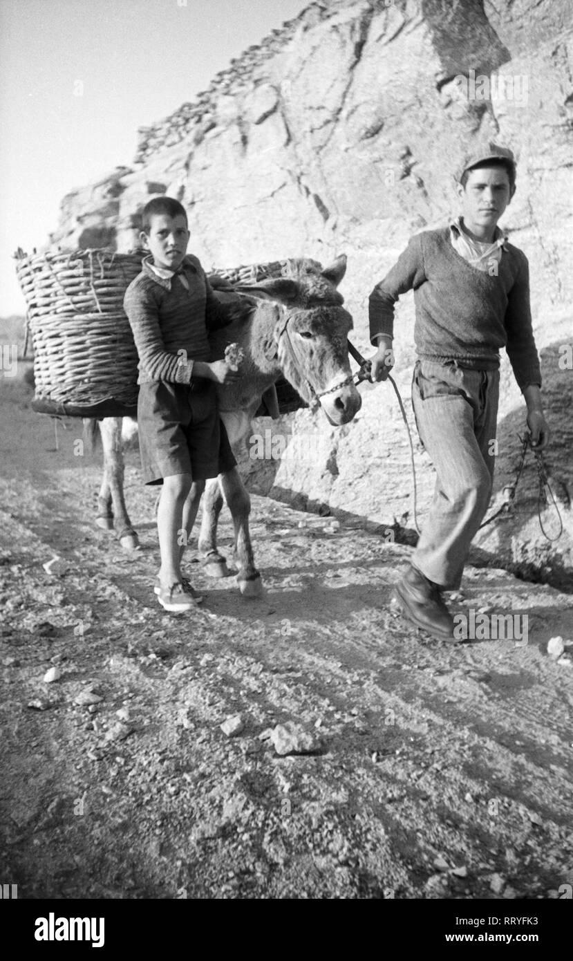 Griechenland, Greece - Zwei Jungen und ihr Esel auf dem Weg in Griechenland, 1950er Jahre. Two boys with their donkey on their way in Greece, 1950s. Stock Photo