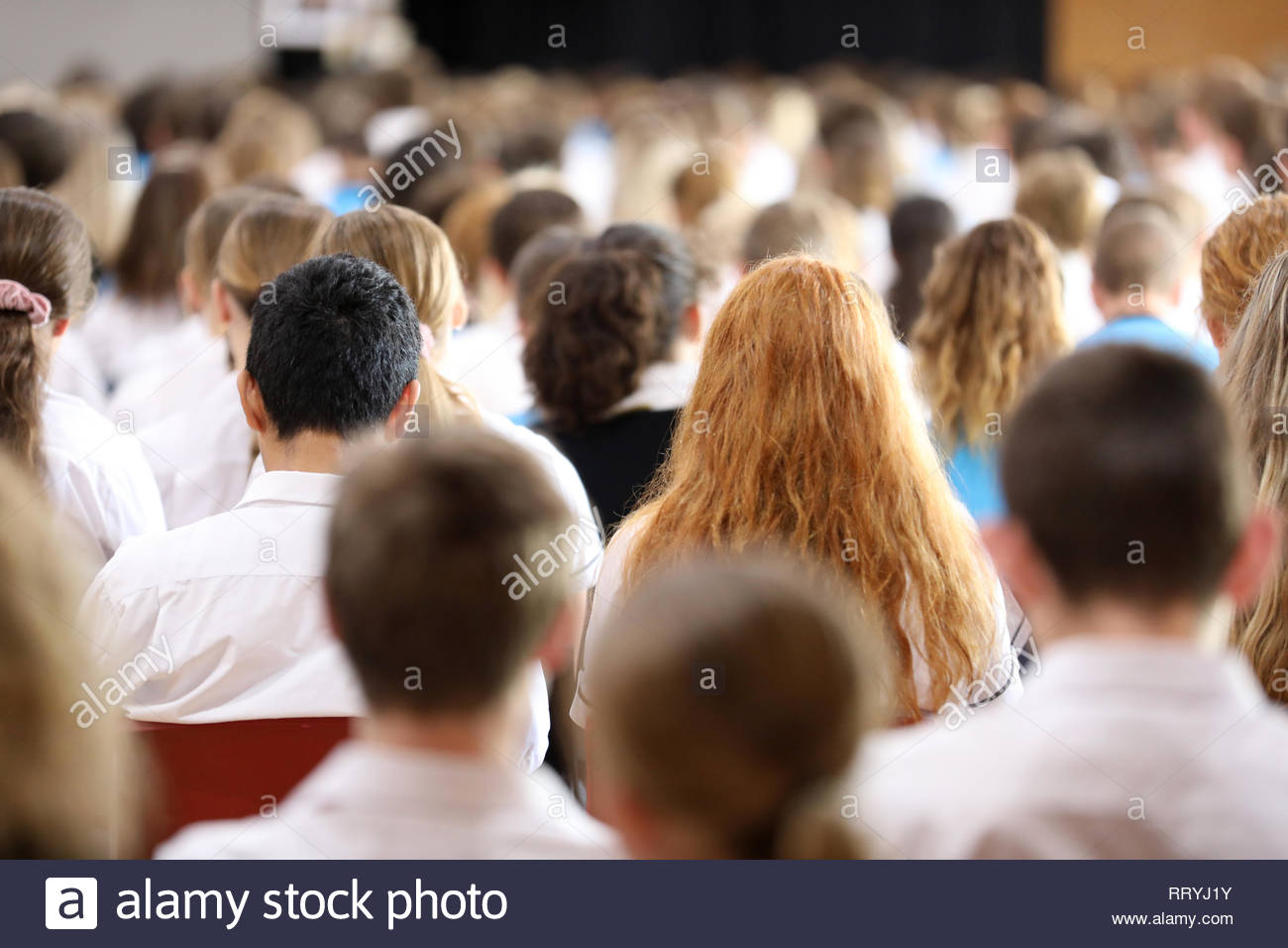 High School students sitting at assembly listening. Large group of school kids facing away anonymous. Education concept. Secondary student heads. - Stock Image