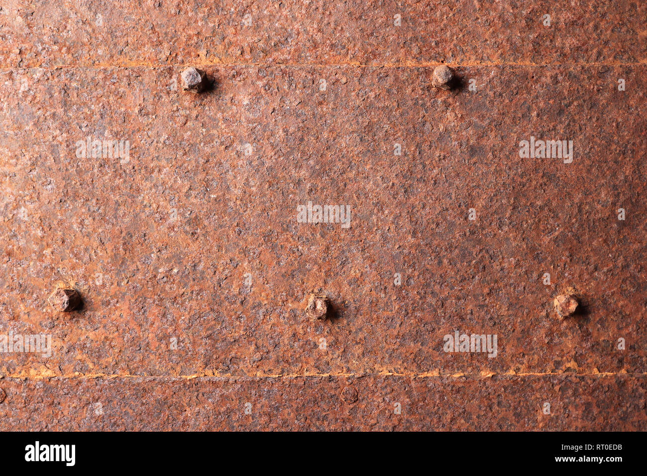 Rusted metallic door with nail heads texture - Stock Image
