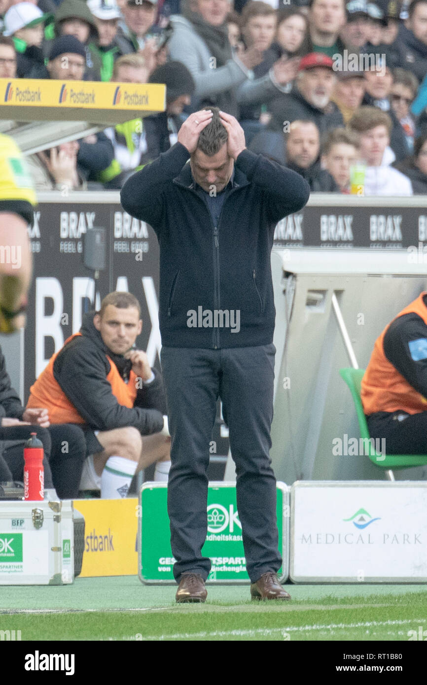 Borussia Monchengladbach, Deutschland. 23rd Feb, 2019. coach Dieter HECKING (MG) grabs his head in disbelief with both hands; bewilderment; Soccer 1. Bundesliga, Season 2018/2019, 23. matchday, Borussia Monchengladbach (MG) - VfL Wolfsburg (WOB) 0: 3, 23/02/2019 in Borussia Monchengladbach/Germany. DFL regulations prohibit any use of images as image sequences and/or quasi-video | usage worldwide Credit: dpa/Alamy Live News - Stock Image
