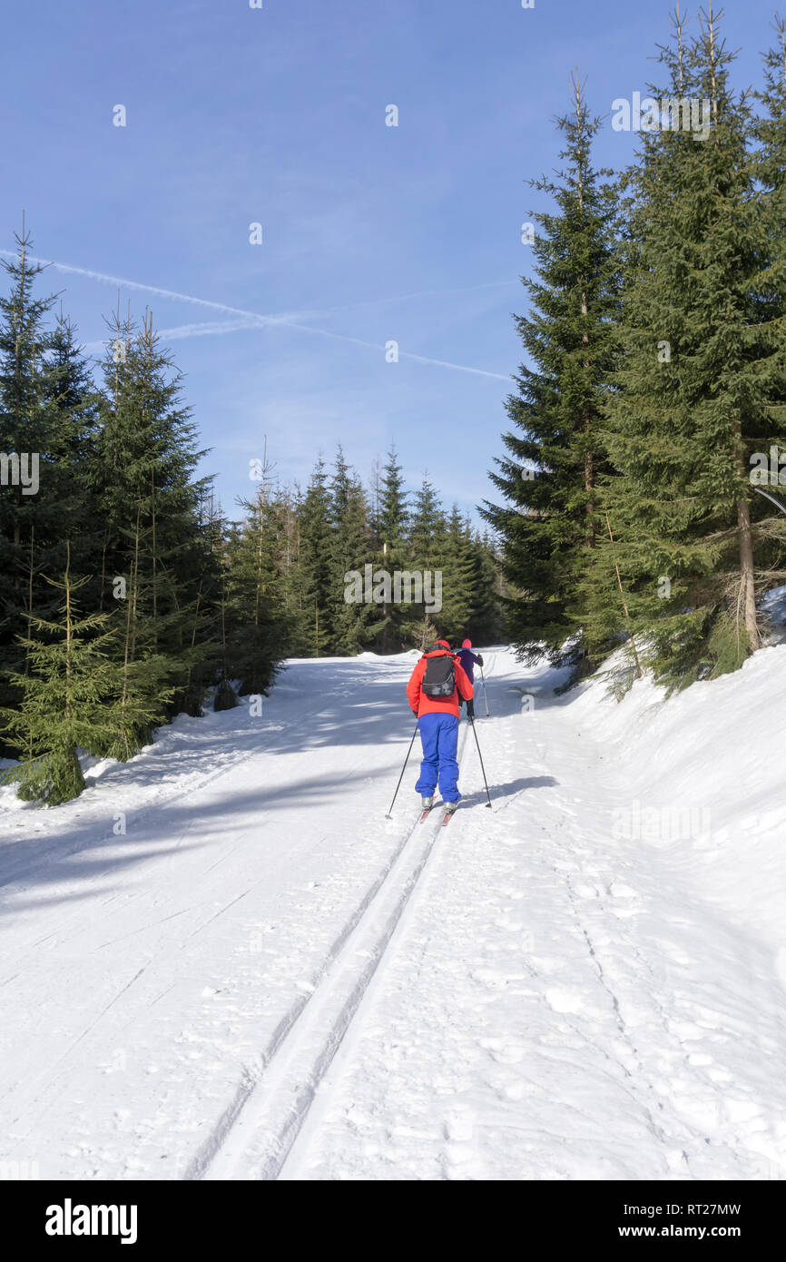 Two cross-country Skiers runs on groomed ski track in sunny winter day. Winter mountain landscape: Jakuszyce, Jizera Mountains, Poland. - Stock Image