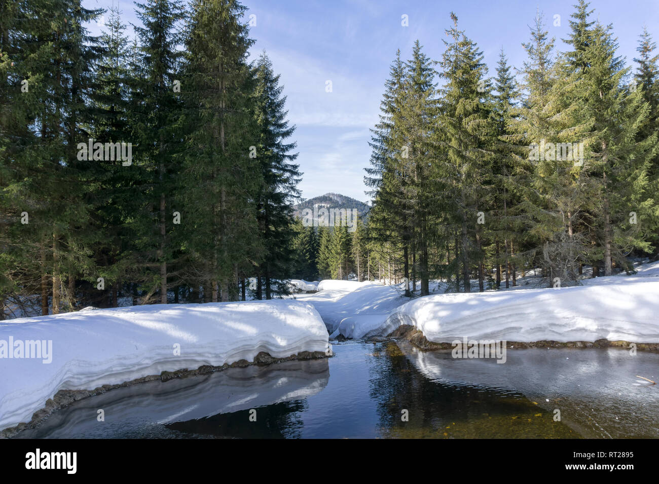 Winter mountain landscape with stream surroundings of Jakuszyce, Poland. View on Bukovec  peak in Jizera Mountains. - Stock Image