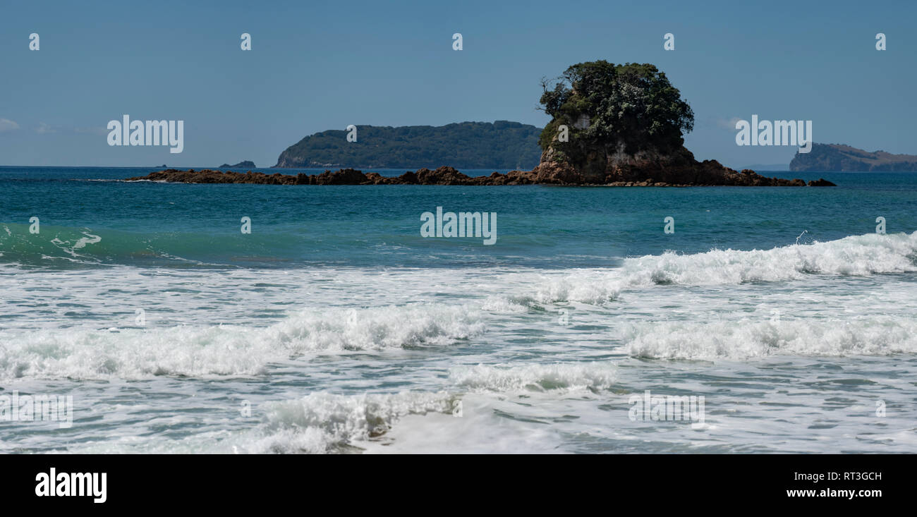 Coromandel beach landscape, North Island, New Zealand - Stock Image