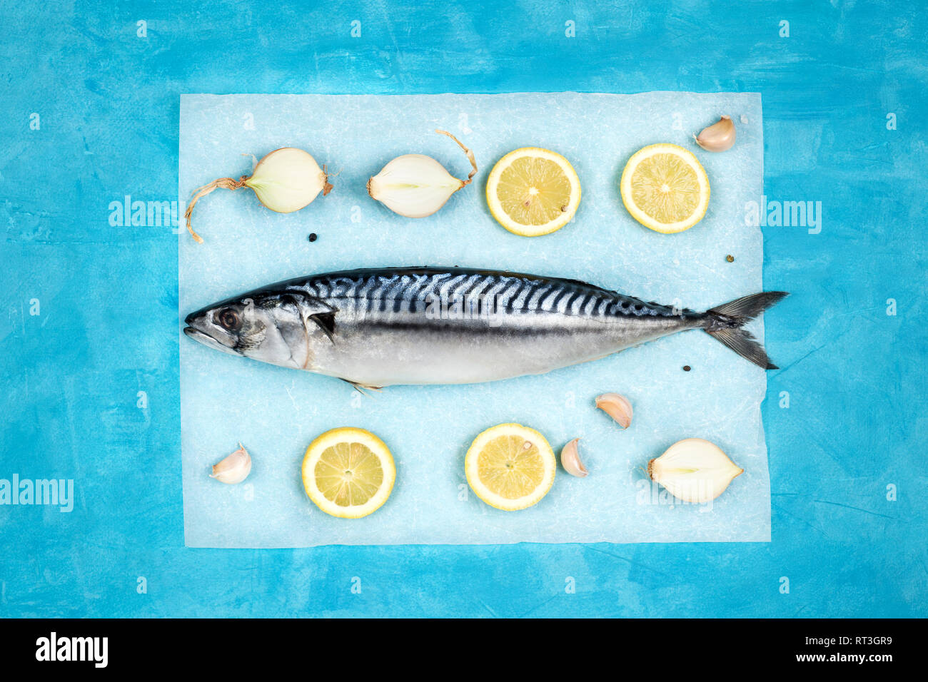 Creative layout made of fresh uncooked maсkerel with condiments on a parchment paper. Mediterranean seafood concept. Horizontal orientation. - Stock Image
