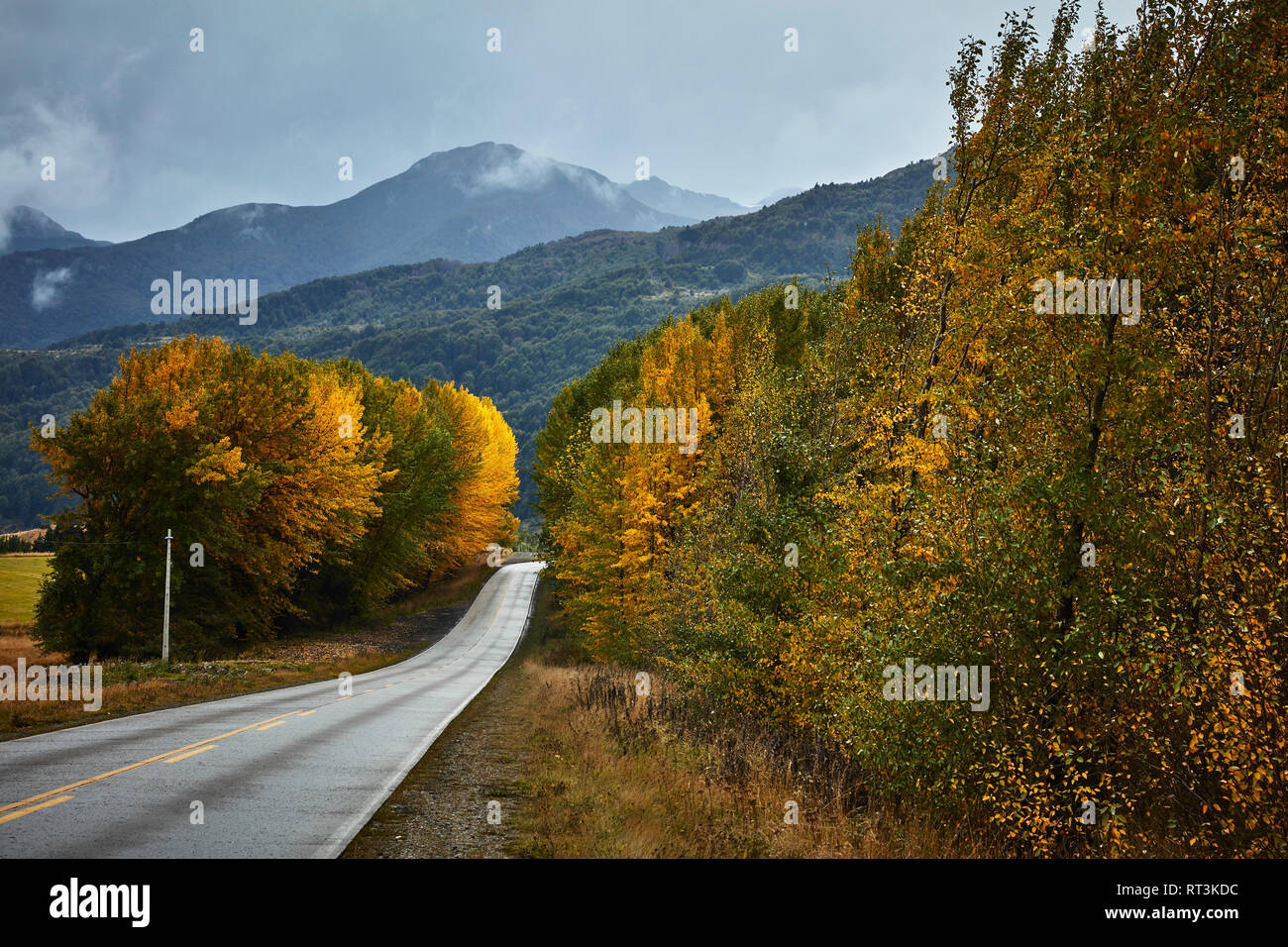 Chile, Puerto Aysen, country road in autumn - Stock Image