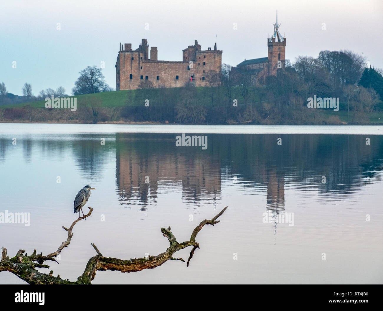 Linlithgow Palace, West Lothian, birthplace of Mary Queen of Scots. - Stock Image