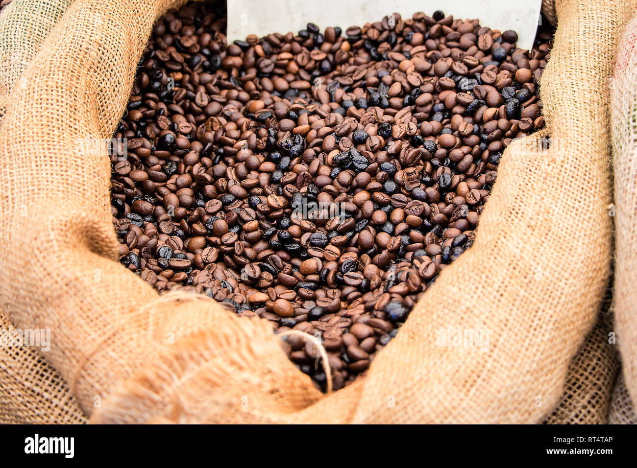 Mixed Roasted coffee beans in a bag - Stock Image