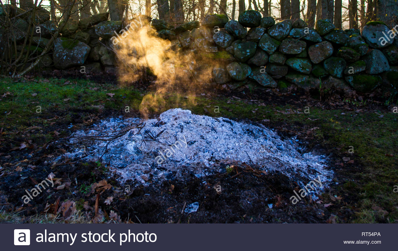 A burnt out fire of garden waste in a residential countryside garden. White ash and ember, no flames. Sunrays shining through the smoke in the air. - Stock Image