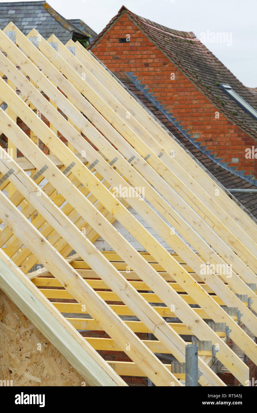 Detail of timber roof trusses on a new roof under construction - Stock Image